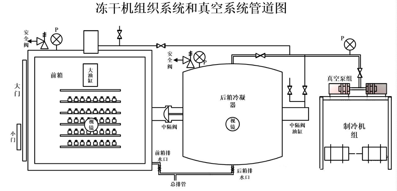 冻干机结构图